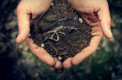 بافت خاک (فیزیک خاک)